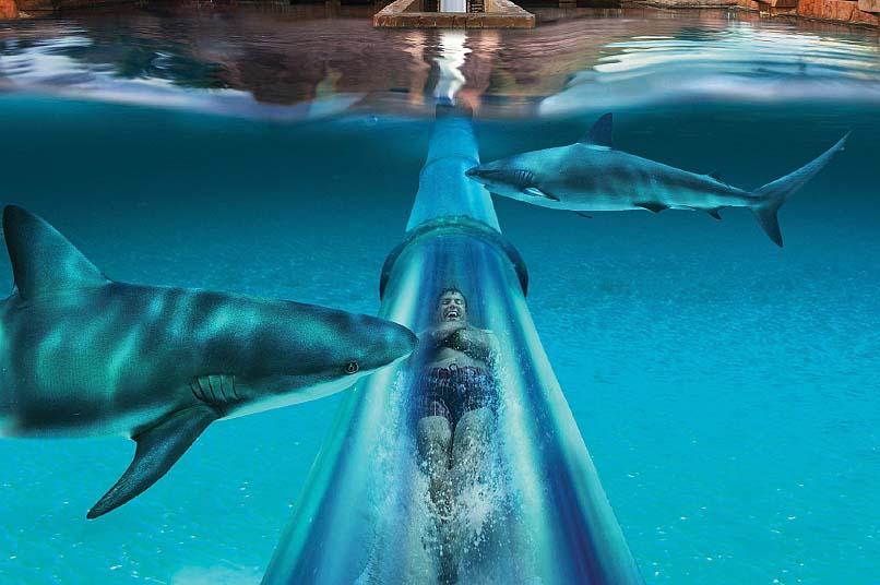 Атлантис аквапарк дубай купить билеты недвижимость за рубежом в аренду